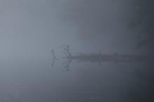 Stick in the fog.