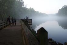 Boardwalk in the fog