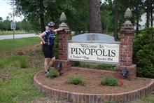 Welcome to Pinopolis